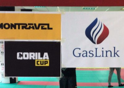 Gorila cup, Motravel, Gaslink